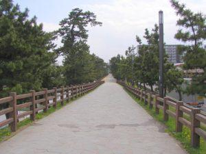 草加松原1