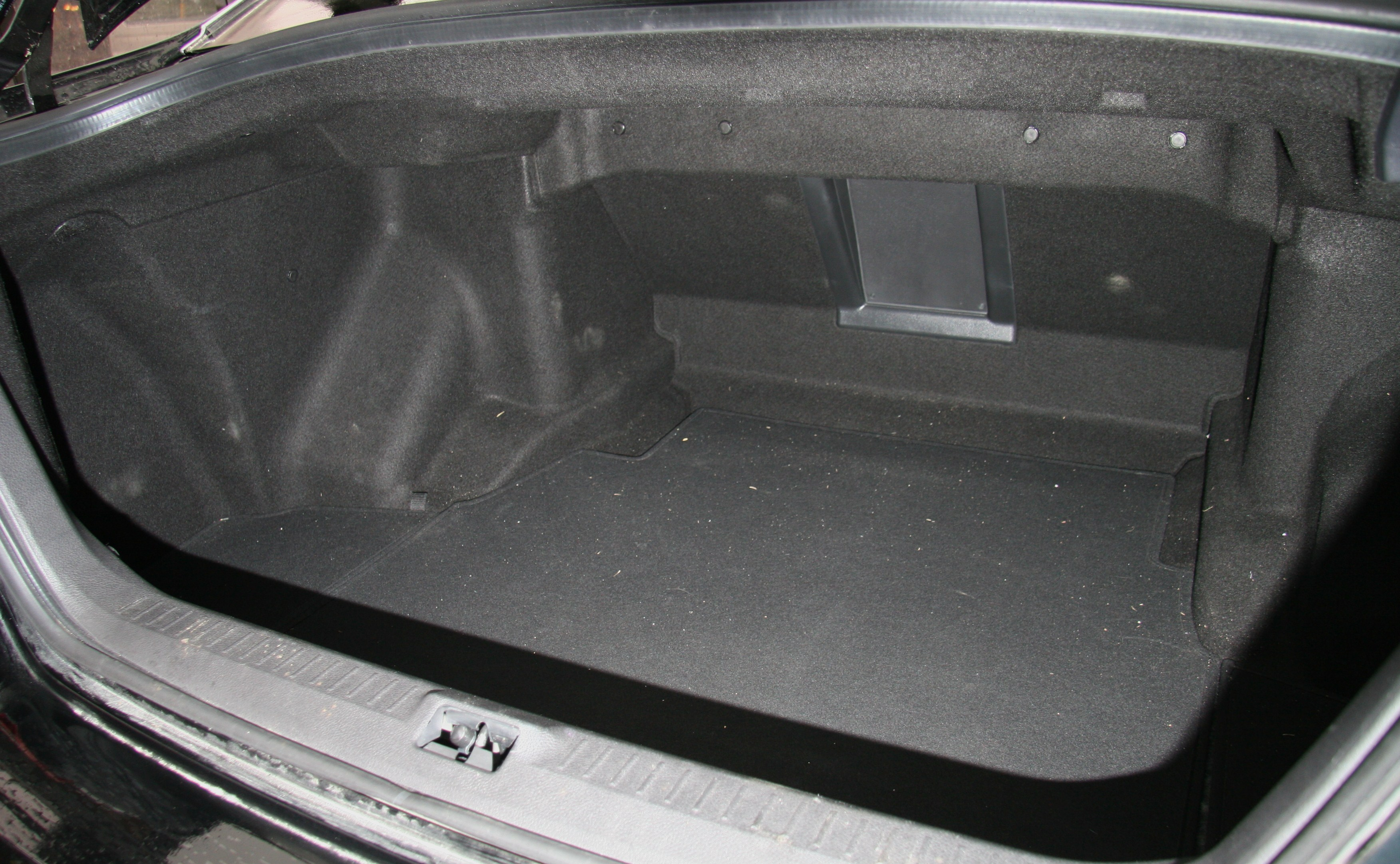 Y50_trunk